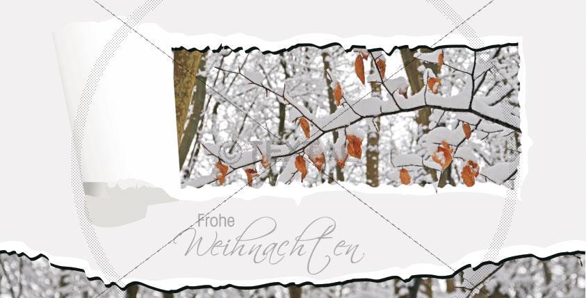 Weihnachtskarte mit Spruch FL-DIN-lang-quer10-1, Vorderseite