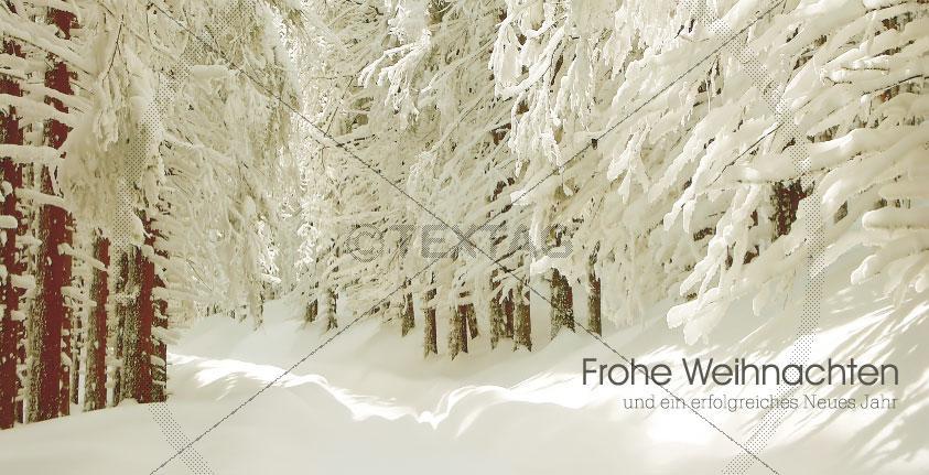 romantische Weihnachtskarte, FL-DIN-lang-quer25-1, Vorderseite