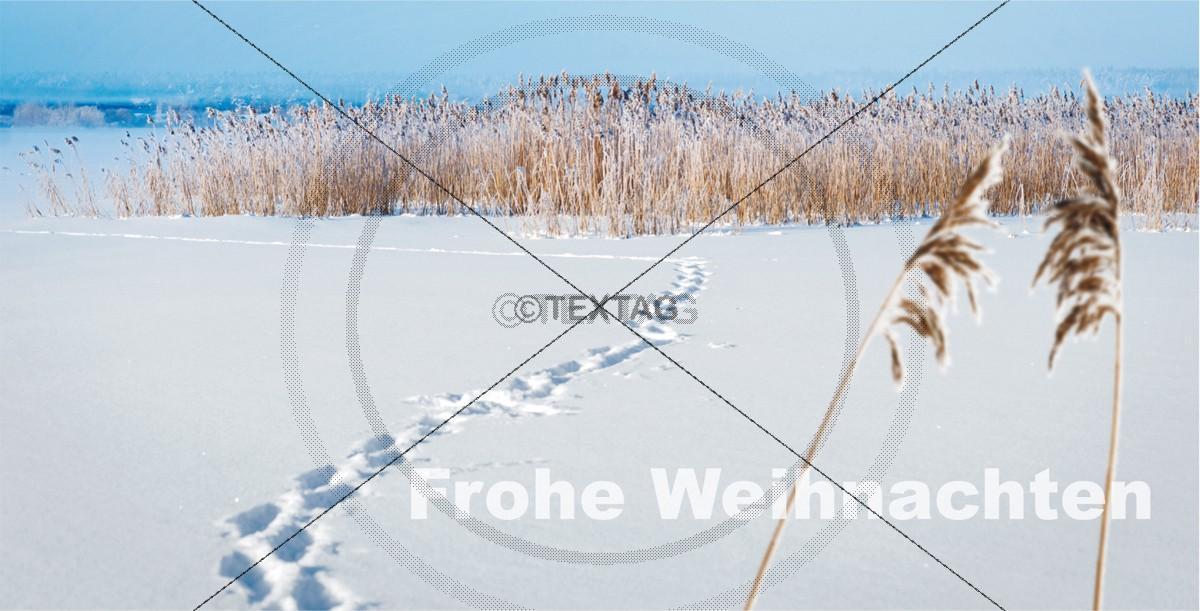 Weihnachtskarte mit Spruch, inkl. Druckkosten FL-DIN-lang-quer31-1 - Vorderseite