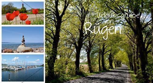 Maxi Card Postkarte - Frühling auf Rügen (129)