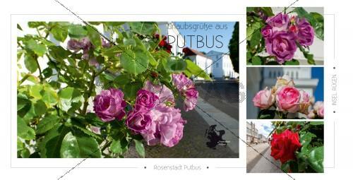 Ansichtskarte - Rosenstadt Putbus (168)