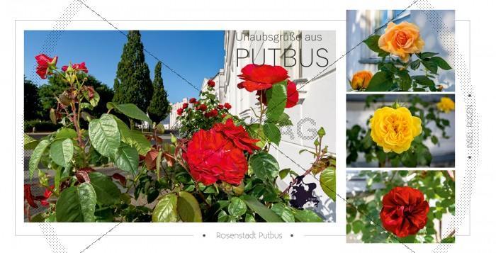 Ansichtskarte - Rosenstadt Putbus (174)