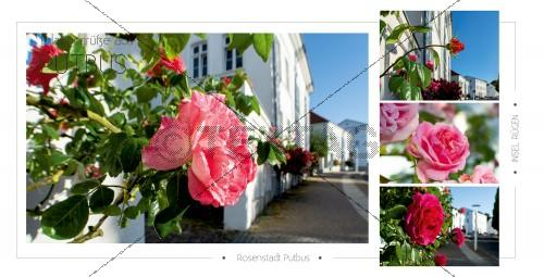 Ansichtskarte - Rosenstadt Putbus (180)