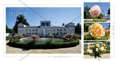 Ansichtskarte - Rosenstadt Putbus (183)